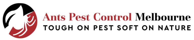 Ant Pest Control Melbourne
